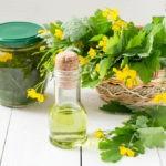 Чистотел – ласточкина трава для женского здоровья